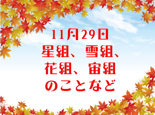 11月29日星組、雪組、花組、宙組のことなど