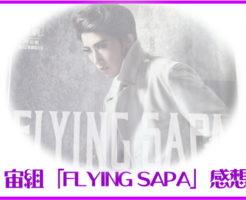 宙組「FLYING SAPA」感想
