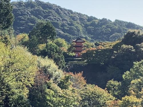 京都の写真1