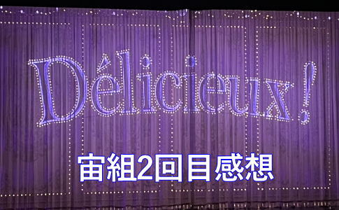 宙組『シャーロック・ホームズ』『Délicieux』2回目感想